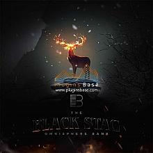 Brandon Chapa Black Stag for [Omnisphere Presets] 预制音色